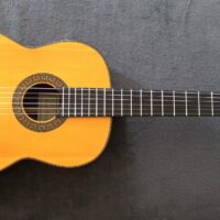 Hanika Classical Guitar 18P Upper Class with Pick Up + Case