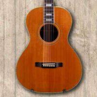 Akustik Gitarren
