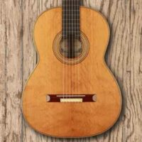 Classical Concert Guitars