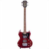 Hoyer 5045 SG Bass