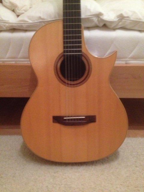Meistergitarre Einzelstück
