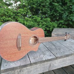 BREEDLOVE Westerngitarre, Organic Wildwood, Companion, Natural