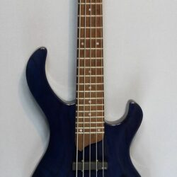 Esh Various 5 String E-Bass