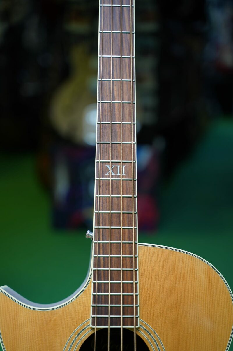 Ortega D1-42E NAT