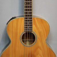 Richwood RB-60 E Akustikbass