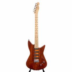 """Tausch Guitars Custom Modell """"Shark"""""""