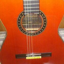Bartoli Guitar CLASSICFLAMENCO CONCERT