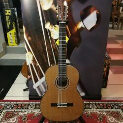 Gewa Pro Andalus 25A Classical Guitar