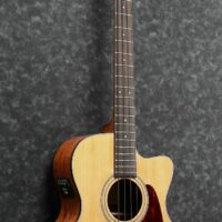 Ibanez AVCB9CE-NT AVC Series Acoustic Bass 4 String Thermo Aged Natural Low Gloss