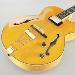 Ibanez PM2-AA Electric Guitar Pat Metheny Signature Antique Amber + Case