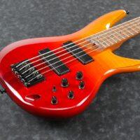 Ibanez SR875-ALG SR Series E-Bass 5 String Autumn Leaf Gradation