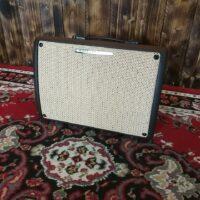 Ibanez T30II Troubadour 2-Channel Acoustic Amp