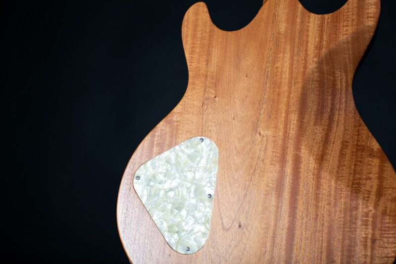 tonfuchs dyna guitar 10