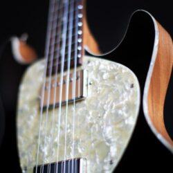 tonfuchs dyna guitar 13