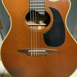 APX 10 Soundhole scaled