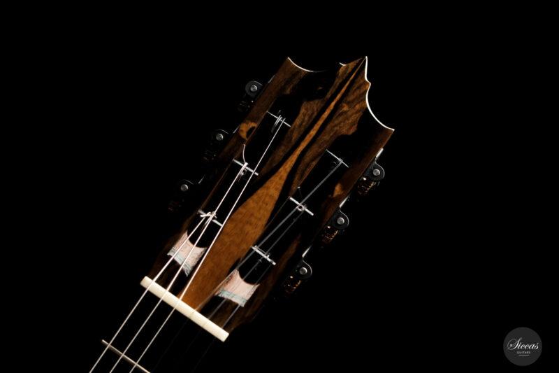 Classical guitar José Marques 2021 20
