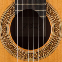 Classical guitar Sebastian Stenzel 2017 4