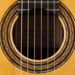 Classical guitar Vladimir Druzhinin 2021 4