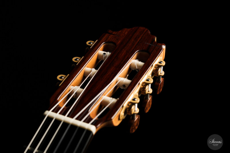 Classical guitar Vicente Carrillo Doubletop 2021 15
