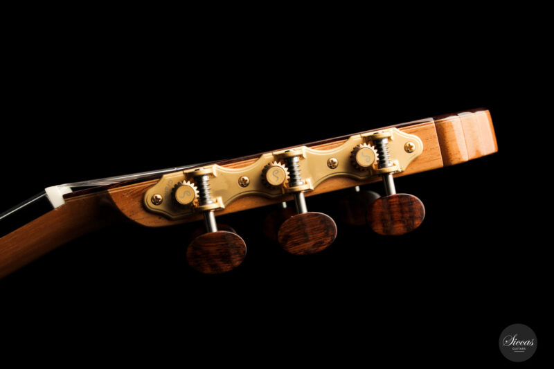 Classical guitar Vicente Carrillo Doubletop 2021 17