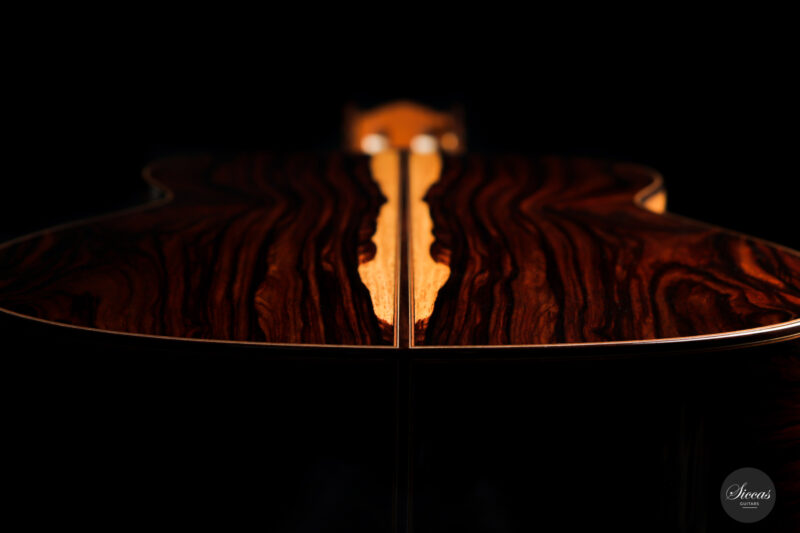 Classical guitar Vicente Carrillo Doubletop 2021 22