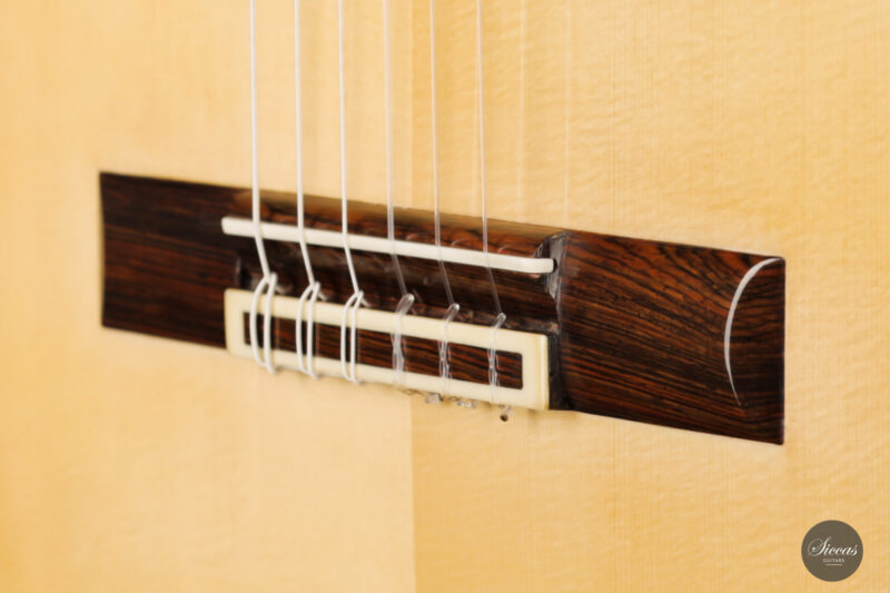 Classical guitar Jesus Bellido 2021 11