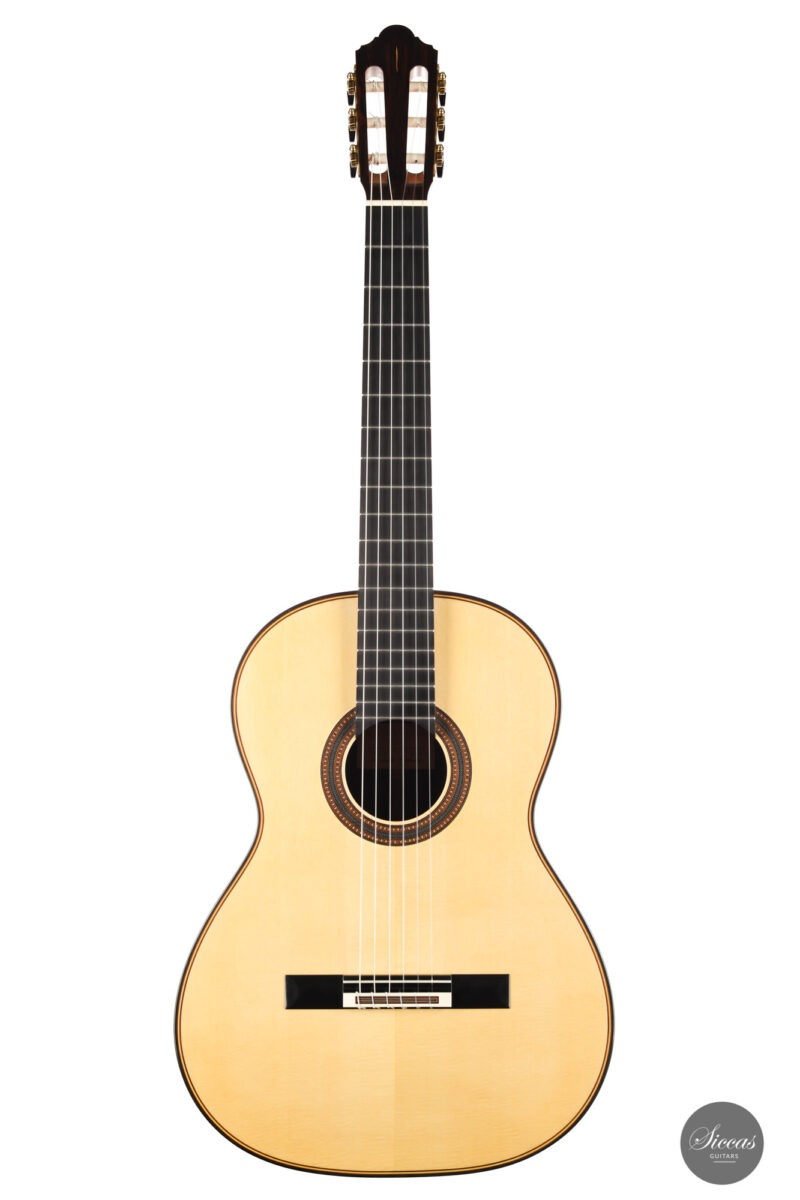 Classical guitar Michel Brück 2017 1