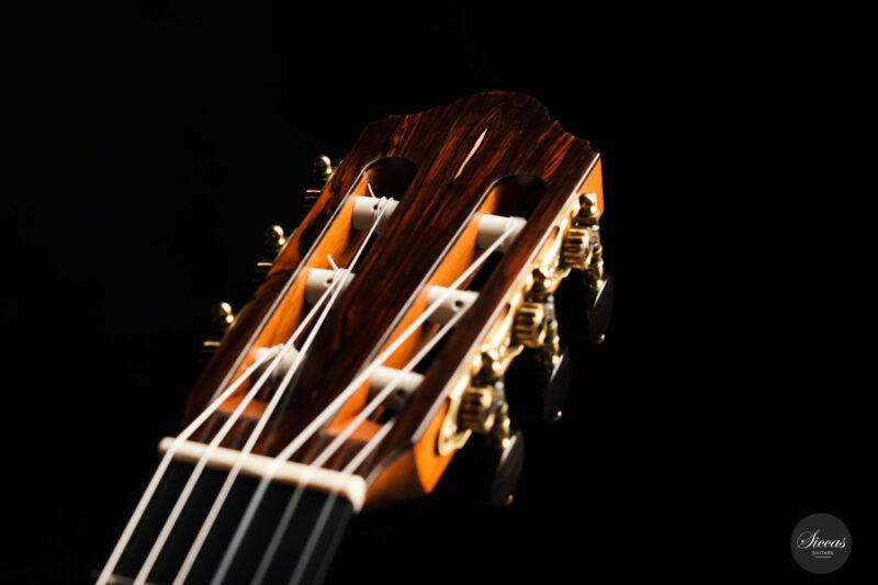 Classical guitar Michel Brück 2017 17