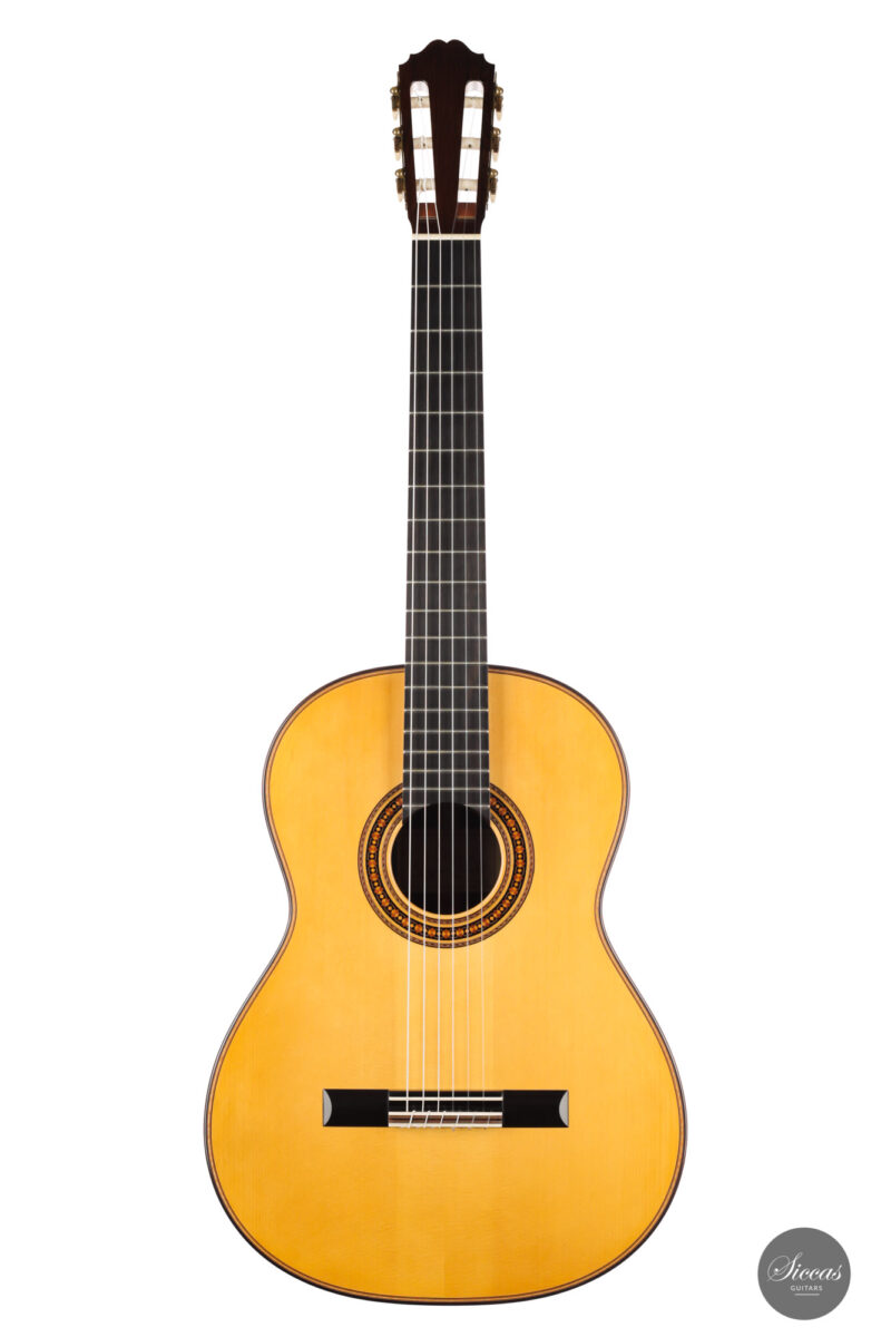 Classical guitar Stefan Zander 2015 13