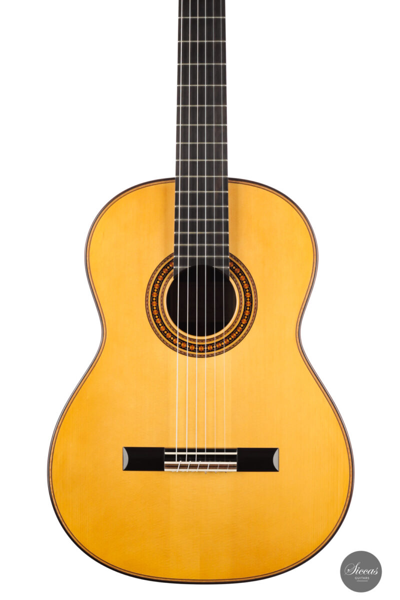 Classical guitar Stefan Zander 2015 14